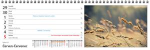 Klasický stolní kalendář roku 2020 - týdenní - jmenný - kalendárium